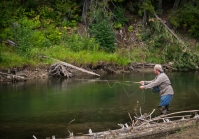 In this creek he caught, and released, a brown trout