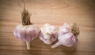 Garlic from my garden