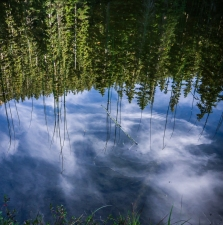 A small pond near the trailhead
