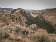Pipestone Canyon from up on top