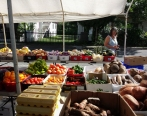 The produce market. Fruits and vegetables arrived from Puerto Rico three days a week