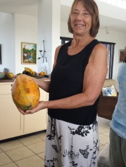 Now that's a papaya!