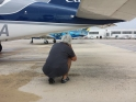 Flora crouches to get a photo of a brightly painted Cape Air plane