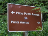 Playa Punta Arenas used to be known as Green Beach and it was our favorite