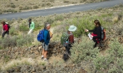 Wildflower watchers often do not get very far up the trail