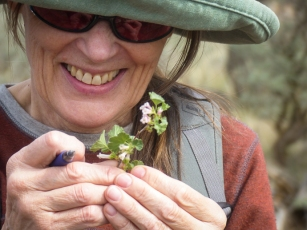 Leahe examines a wax currant flower