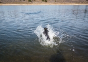 Like everything she does, Sky approached swimming with enthusiasm.