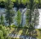 Tree shadows along the river
