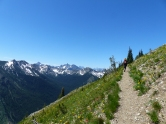 Walking on the PCT towards Grasshopper Pass