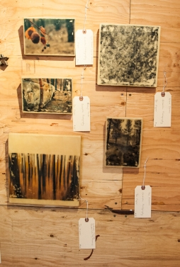 My encaustic transfers inside the Share room. Two of them sold!