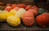 Dana's winter squash