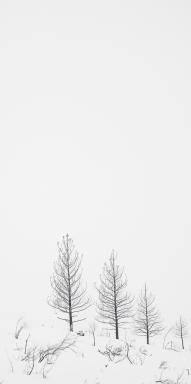 Jan172015_0083