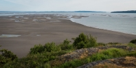 There were Bald Eagles standing out on those exposed mud flats in the distance