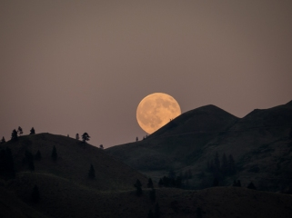 Full moon on July 1