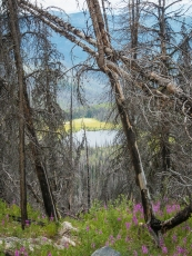 Roger Lake. I photographed it before the Tripod fire, many years ago. I should find that slide and re-print it.