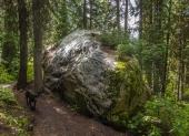 I like this rock