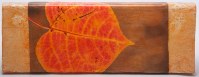 aspen leaf wax