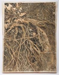dead sagebrush wax