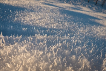 Frost on the snow