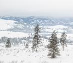 Classic skiing above Pearrygin lake