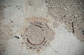 Drain in the floor of a latrine building