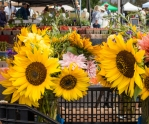 Abundant flowers at the farmers market in Twisp