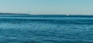 Mt Rainier and a ferry.