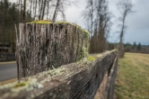 I love this old wood fence