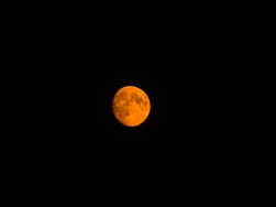 Smoky moon