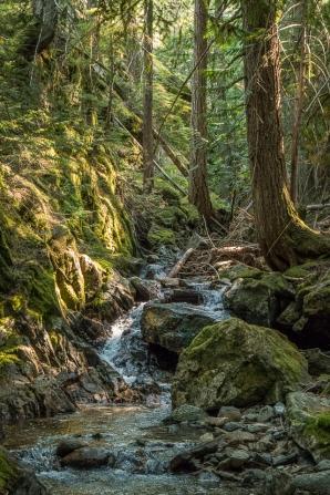 Happy Creek