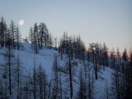 Moonset. Sunrise.