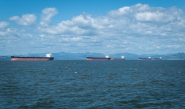 Container ships waiting to go into Portland. Someone said they were there for months, waiting.