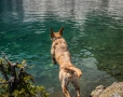 This was the first time Molly got to jump off the rock into Blue Lake.
