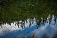 We always stop to enjoy this pond near the trailhead