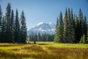 Dry meadows in front of Mount Adams