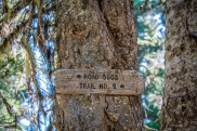 Not much of a sign at a 4 way intersection for those PCT through hikers