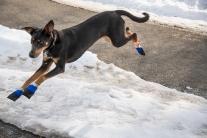 Gretta likes to fly!
