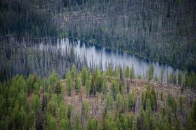 Tiffany Lake